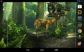 apk forest hd for android
