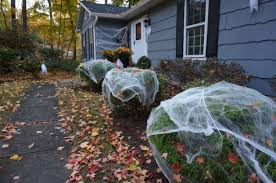 1000 ideas about outdoor halloween decorations on pinterest 12
