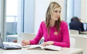 Have someone write your essay   drugerreport    web fc  com Correct Essays Strategic Management have someone write your essay