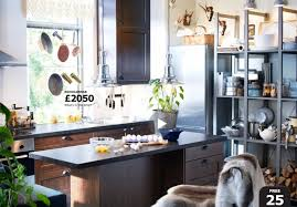 Ikea Kitchen Ideas Pictures Chic Ikea Small Kitchen Ideas Home Design Ideas