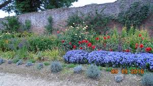 in the walled garden picture of tintern abbey wexford tripadvisor