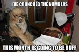 Dog Lawyer Meme - financial advice dog know your meme
