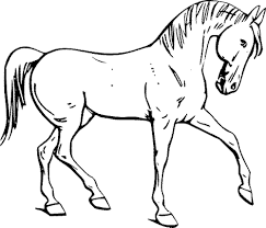 horses printable coloring pages glum me