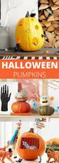 30 Best Halloween Trick Or Treats Images On Pinterest 465 Best Halloween Party Ideas Images On Pinterest Halloween