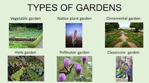 Types Of Vegetable Gardening by Gardening Why Is Gardening Important Teaches You How To Grow