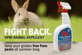 Rabbit Repellent For Gardens by Home