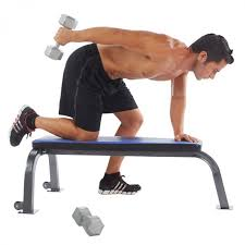 Professional Weight Bench Pure Fitness Flat Bench 8641fb Rural King