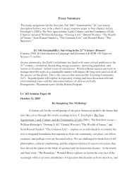 Examples Of Critical Essays Culture Essay Example Cultural Essay Topics What Is A Expository