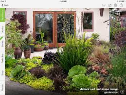 drought tolerant landscape succulents mediterranean garden