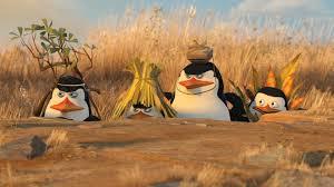 wallpaper penguins madagascar 2 cartoons 1920 1080