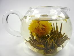 Jasmine Tea Flowers - organic jasmine tea as it steeps in the water the flower