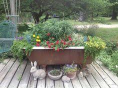 Bathtub Planter Bathtub Planter With Ipomea Thunbergia Sunpatiens Veronica And