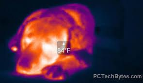 Verizon Router Orange Light Actiontec Firmware Update To Reset Verizon Router