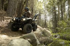 yamaha grizzly 700 fi 4x4 eps