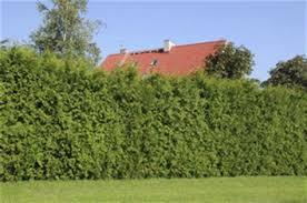 chambre agriculture haute marne chambre d agriculture haute marne 100 images aucune parcelle