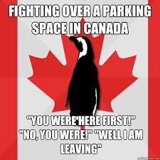 Canada Day Meme - witnessed a huge canada day brawl meme guy