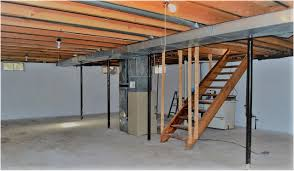 how to remove black and white mould in your basement city wide group