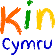 Terms And Conditions Of Use by Terms And Conditions Of Use U2013 Kin Cymru