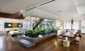 modern homes with lush indoor plants dwell interior courtyard