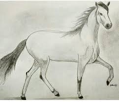 2 answers what are the best pencil sketches of running horses