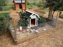 bantam chicken coop ideas with building chicken coops coop plans