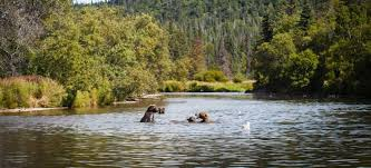 Alaska Rivers images Alaska fly fishing lodge copper river lodge jpg