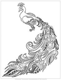easy peasy coloring page the coolest free coloring pages for adults peacock colors easy