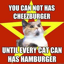 Meme Cheezburger - you can not has cheezburger cat meme cat planet cat planet