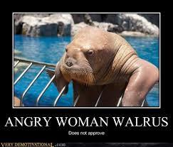 Walrus Meme - angry woman walrus very demotivational demotivational posters