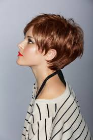 17 best images about haircuts on pinterest for women very short