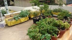 Ideas For Terrace Garden Terrace Garden Design Horibble Terrace Home Garden Landscaping