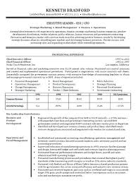 exle of resume summary resume executive summary exle resume executive summary statement
