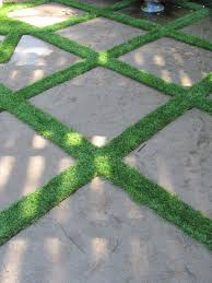 Backyard Floor Ideas Grass Between Pavers Design Pictures Remodel Decor And Ideas