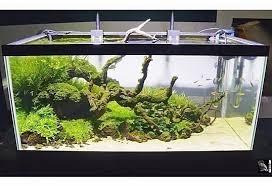 Aquascape Freshwater Aquarium Halo Adu Aquascaping Deluxe Freshwater Aquarium Light Fixture Review