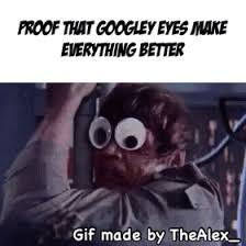 Googly Eyes Meme - everything s better with googly eyes