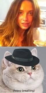 Cat Heavy Breathing Meme - meme user generated heavy breathing cat