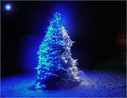 Blue Christmas Decorations Pictures by Best 25 Blue Christmas Tree Decorations Ideas On Pinterest Xmas