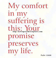 comforting verses for death collection scriptures on comfort during death photos daily