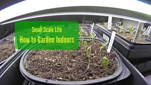 indoors garden how to garden indoors small scale life
