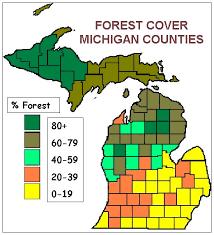 Michigan forest images Forest descriptors jpg