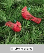 79 best cardinal themed decor images on