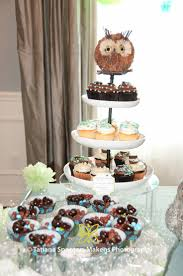 196 best owl party images on pinterest owl parties birthday