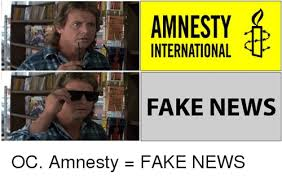 International Memes - international fake news oc amnesty fake news meme on me me