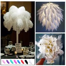haochu 12pcs natural ostrich feathers diy wedding flower party