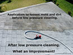 Mallard Roof Cleaning by Roof Cleaner Five Star Roof Cleaning Has Helped Rid Homes Just