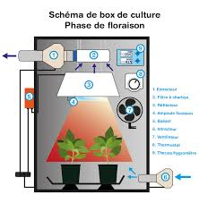 extracteur chambre de culture box de culture indoor discount