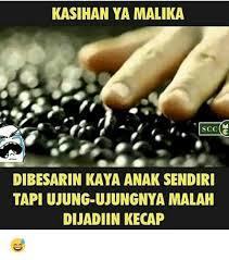 Memes De Nalgones - 25 best memes about malika malika memes