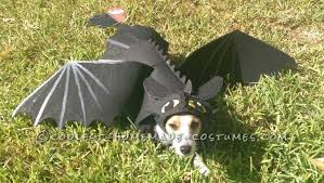 Halloween Costumes Cats Wear 14 Adorable Couples Costume Ideas Dogs Kids Barkpost