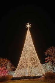 outdoor christmas trees find out about santa at http www taolf