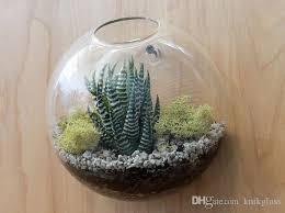 wall bubble terrarium wall plant terrarium wall glass vase wall